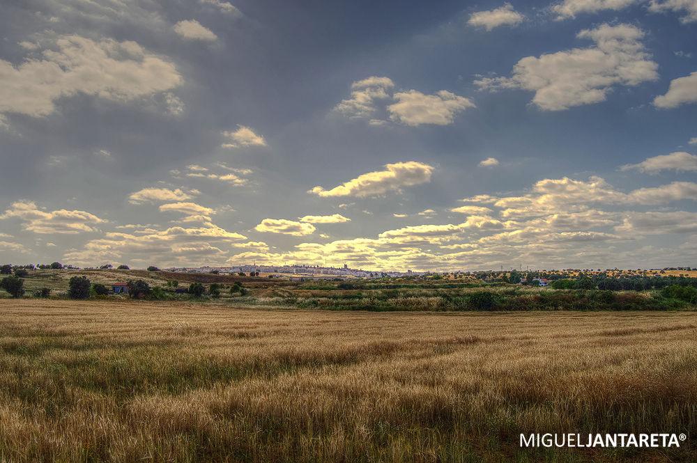 A minha cidade... by migueljantareta