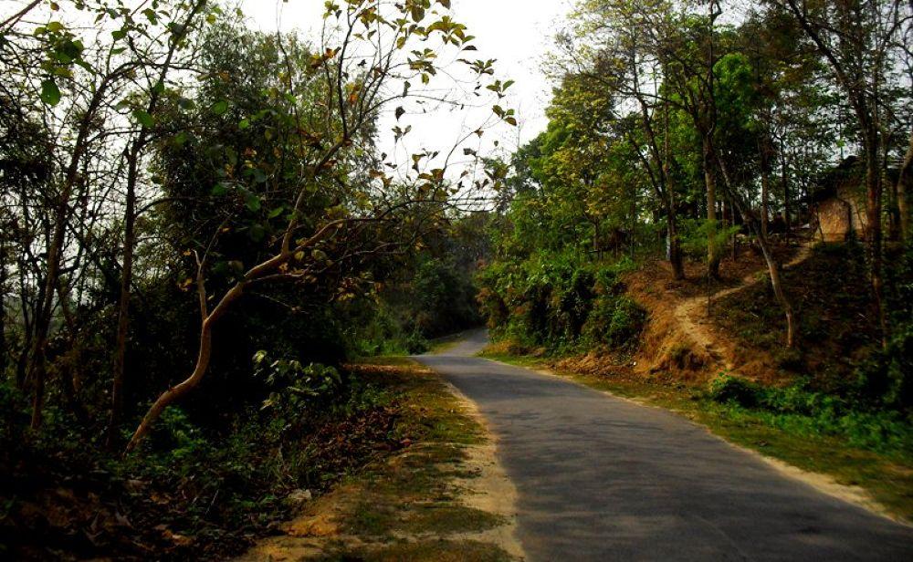 The road not taken by tarequlislam334