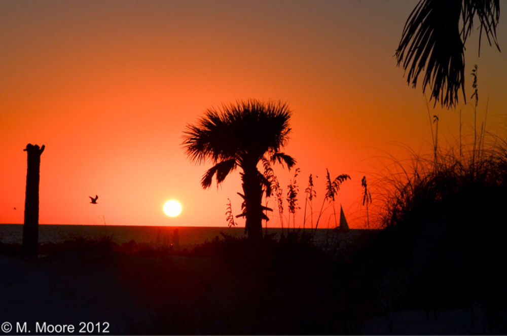 Another Clearwater Sunset by mvmoorephotography