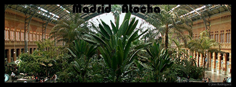ATOCHA.JPG by Joss Rodríguez
