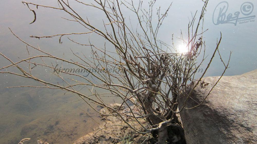 dasham falls (22) by Kironangshu Sekhar Bag