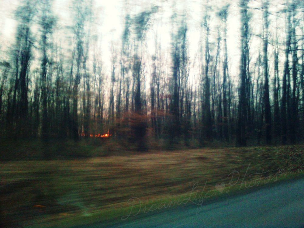 Gone... by Belladonna Lullaby