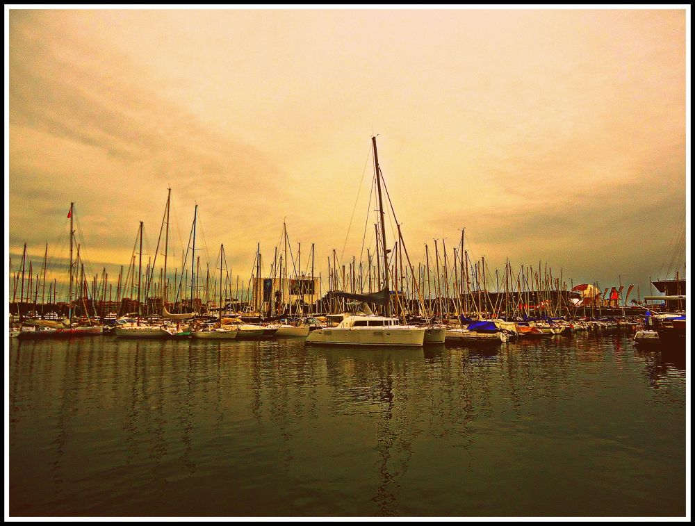 barco by MalakNofal