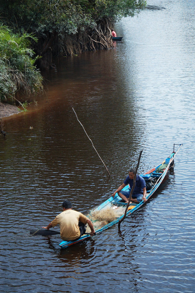 fisherman by Nadi