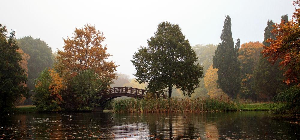 jesen2012 by alexandrasz