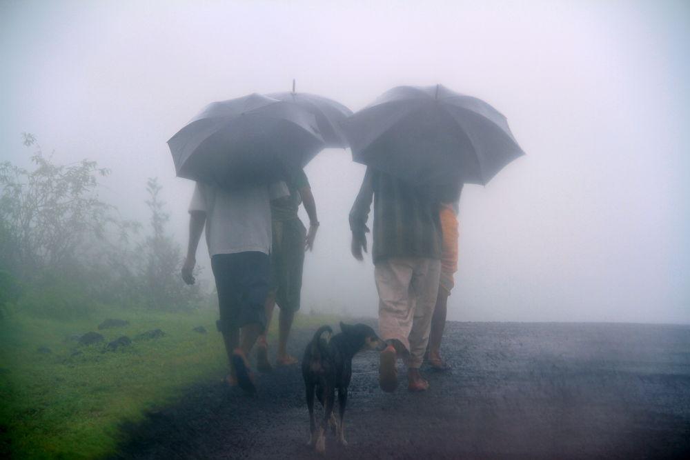 walkinmist by Amit K