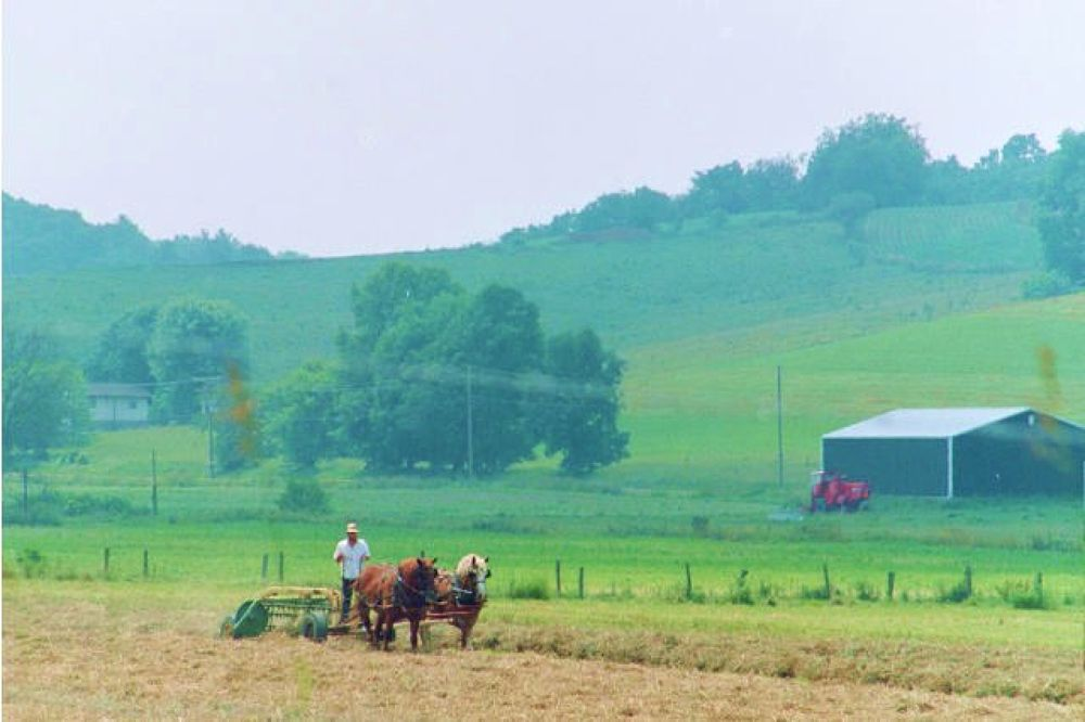 Holmes County, OH.  by mbbenfield