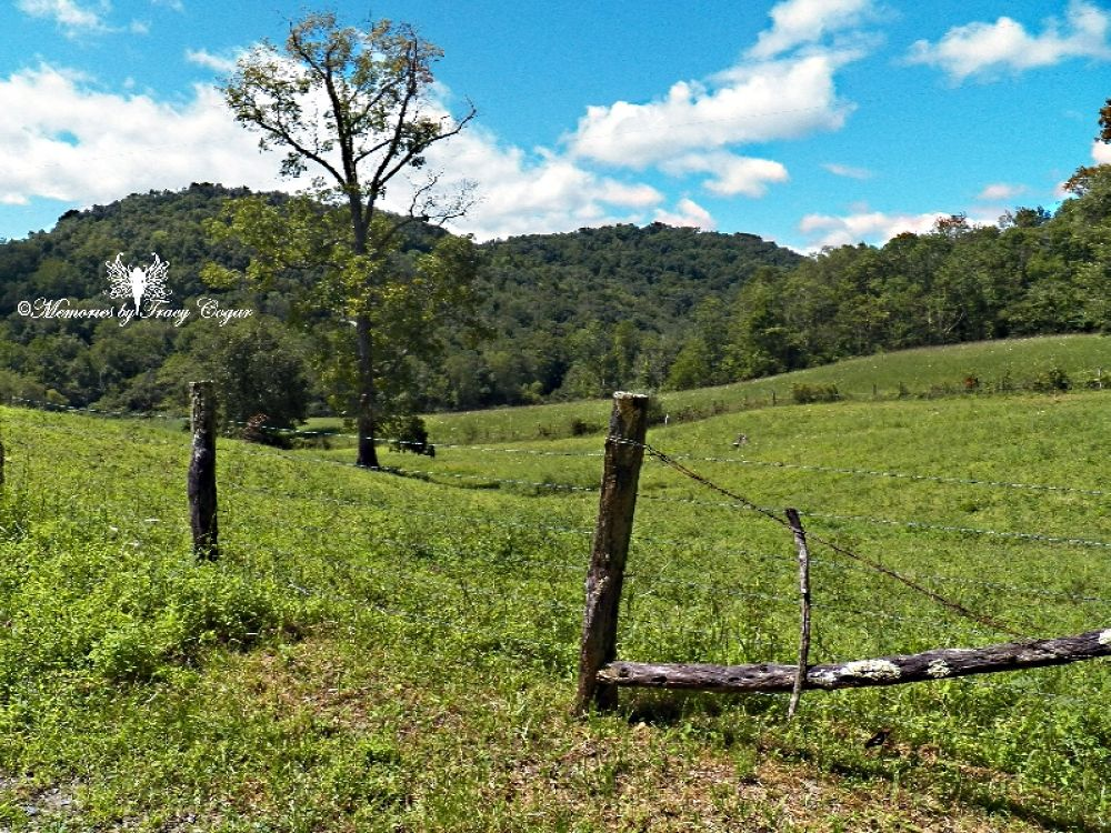 Rolling West Virginia Hills by cogarslionheads
