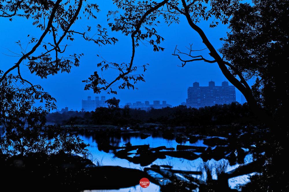 Blue corner by iAnson
