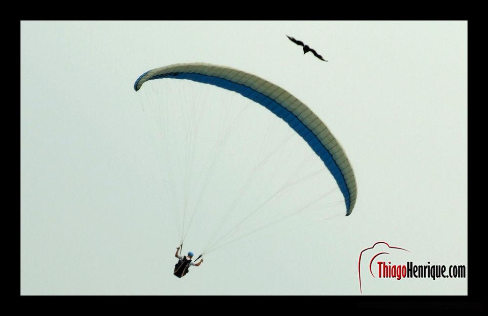 Flight Synchronism by ThiagoHenrique