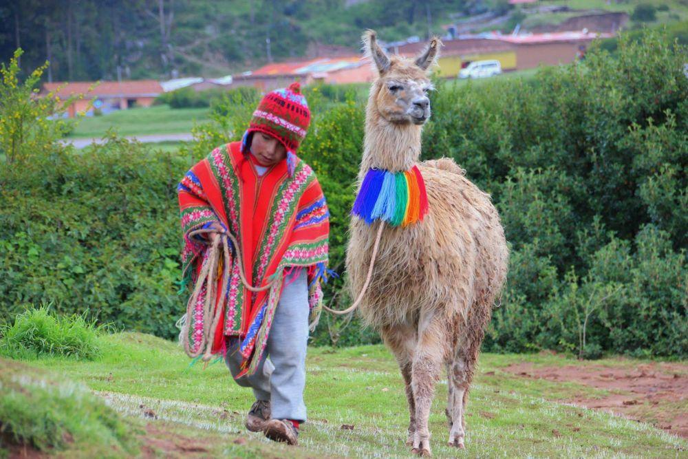 Chica y llama by Beom Photo