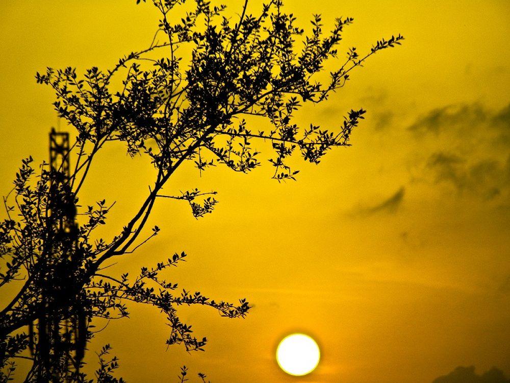 Sun_Set......... by Khandaker Almas Mahmud Ador