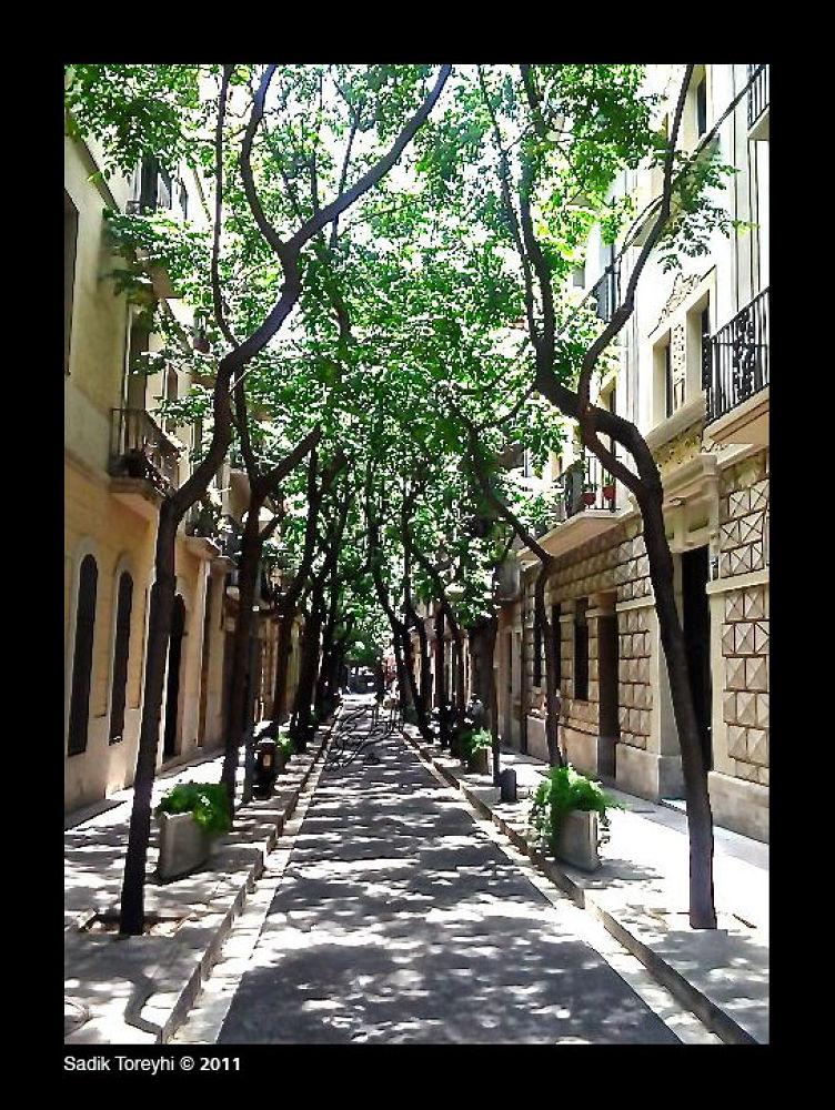 Side Street in Barcelona by Toreyhi