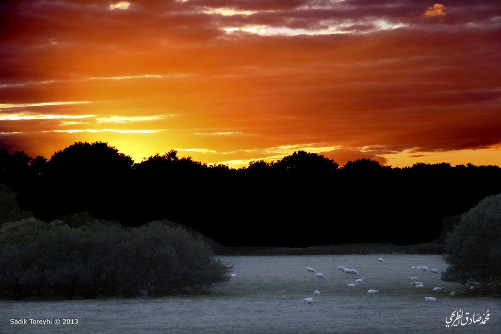 English Countryside by Toreyhi