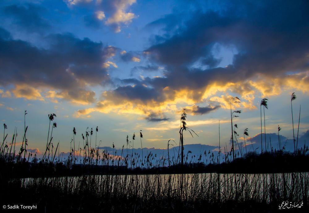 Sunset by Toreyhi