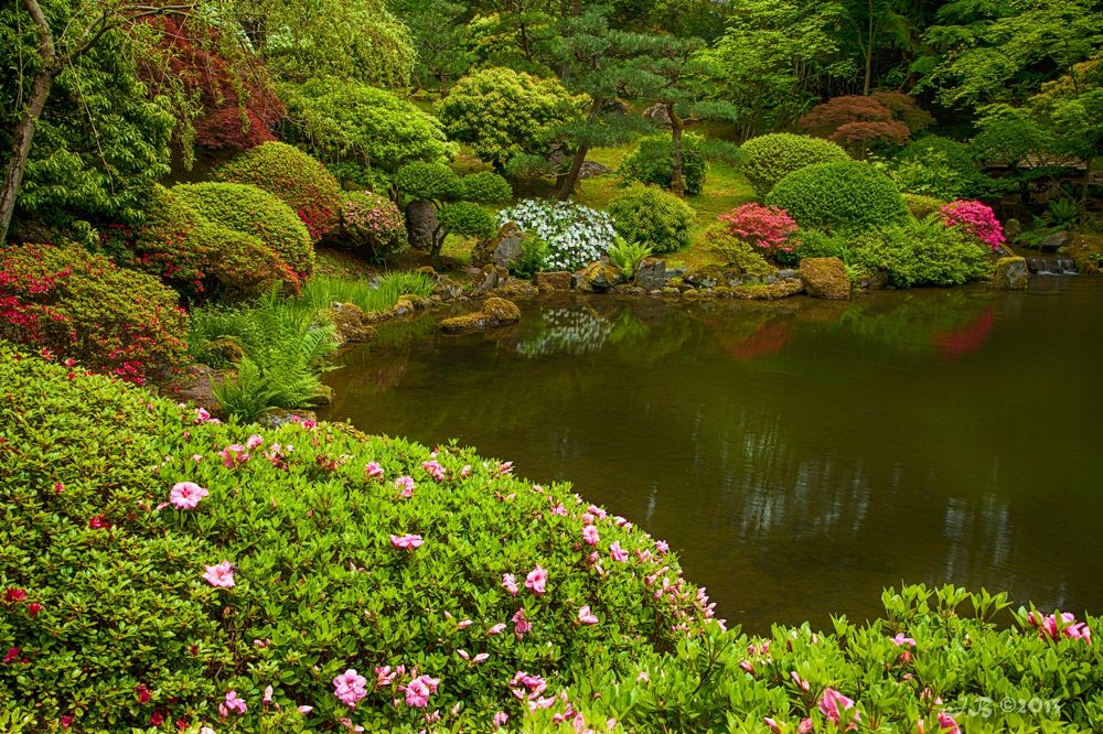 Japanese Gardens 1 by jacolynca