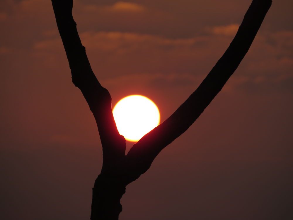 mesmerising sunrise by Sai Krupa Chary