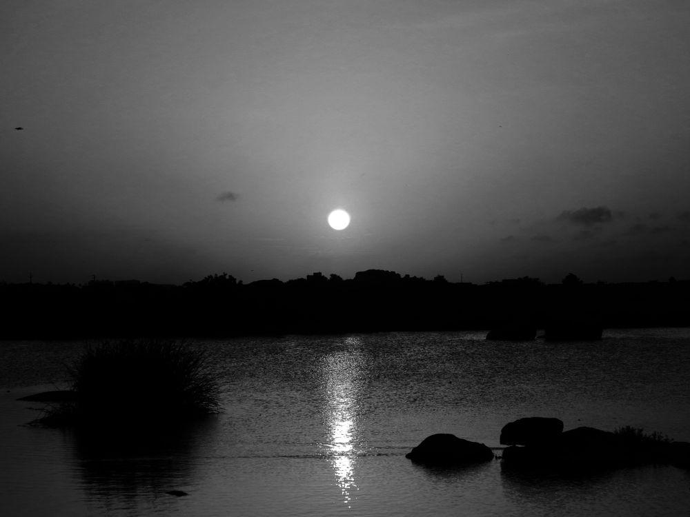 IMG_2713 by Sai Krupa Chary
