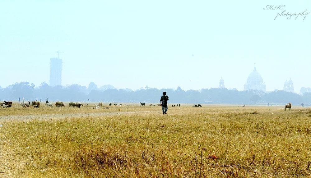 Alone on his way....jpg by mac_savoir_et_devoir