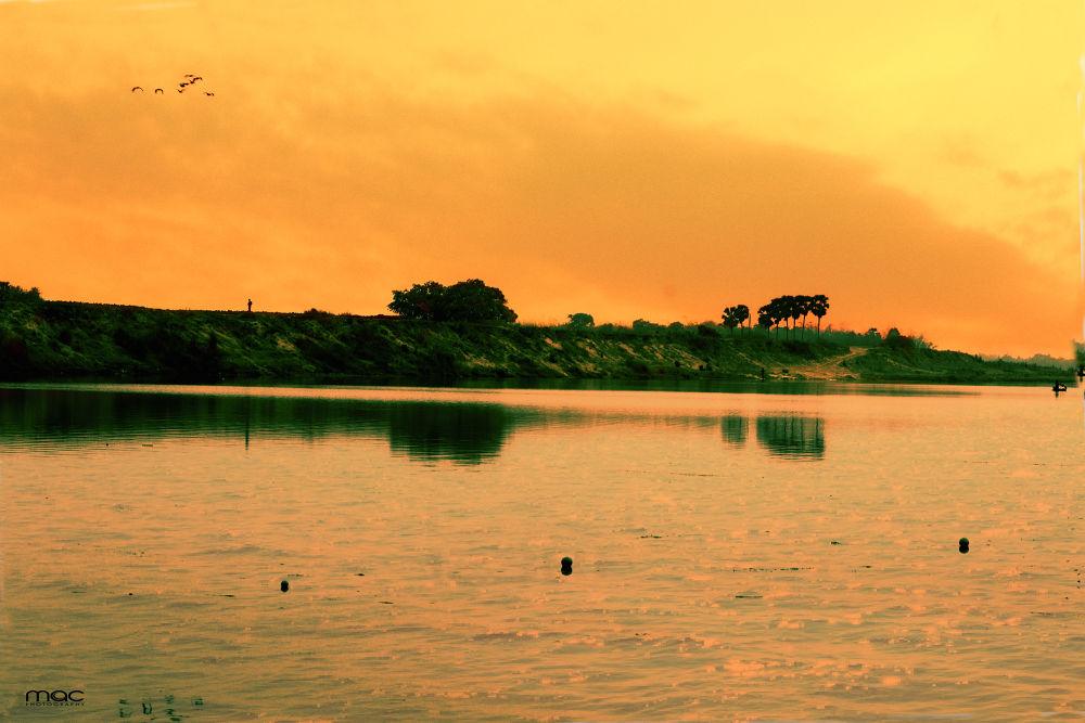 bring me the horizon......jpg by mac_savoir_et_devoir