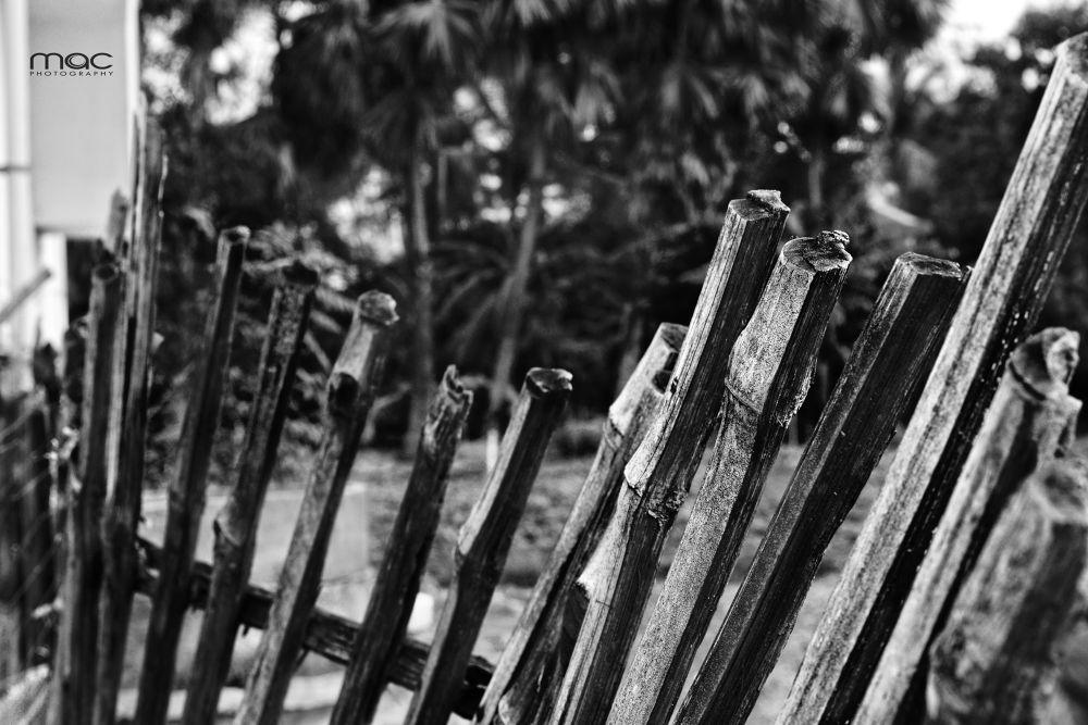 fence of house....jpg by mac_savoir_et_devoir