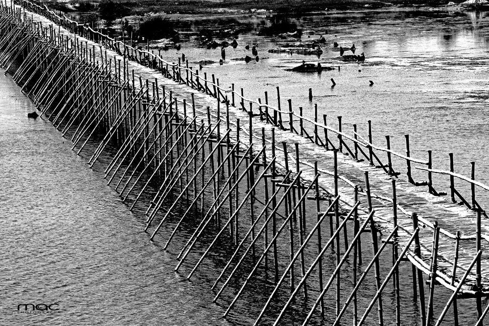 Bamboo Bridge.jpg by mac_savoir_et_devoir