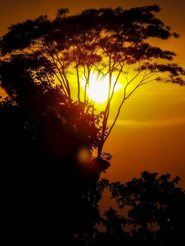 Sunset into-4.jpg by ЯДJJIБ'S PЂØŦØ