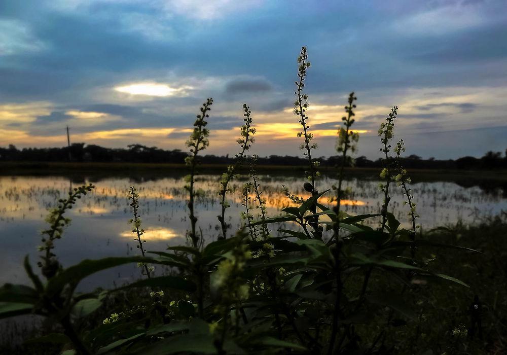 Sunset Reflection 2 by ЯДJJIБ'S PЂØŦØ