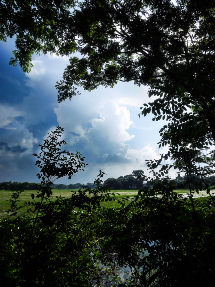 Photo in Nature #nature #landscape #sky #ypa2013