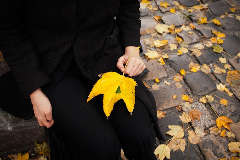 automne.jpg by laurentguyonvarch42
