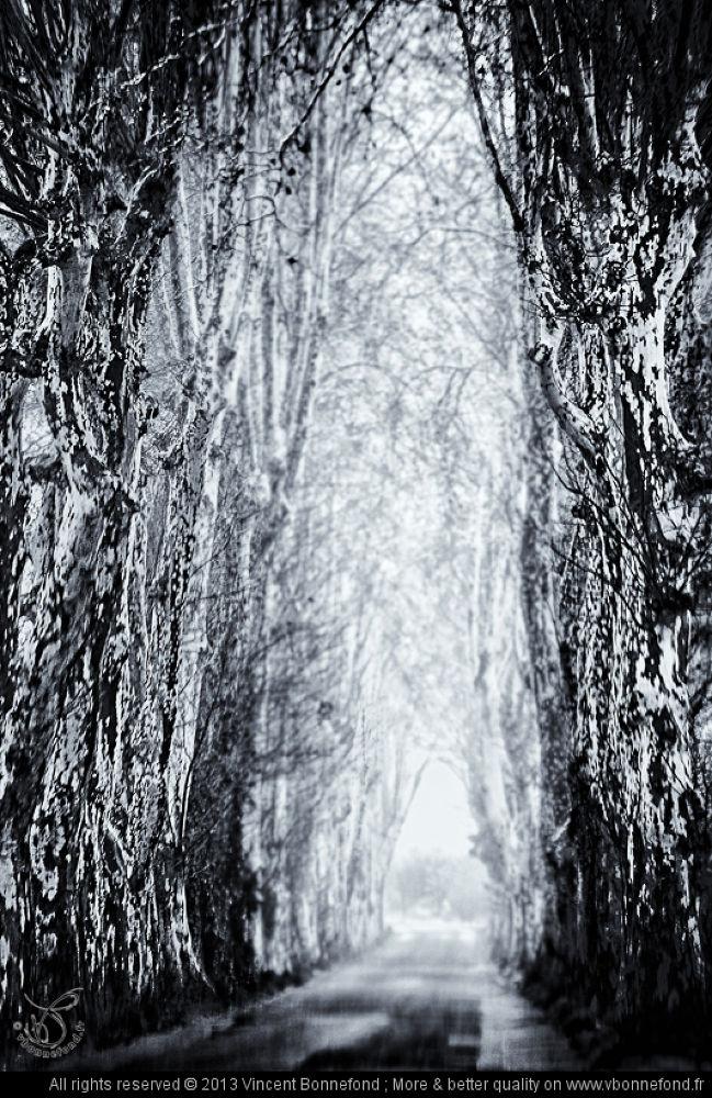 03-Le-bout-du-tunnel.jpg by VBonnefond