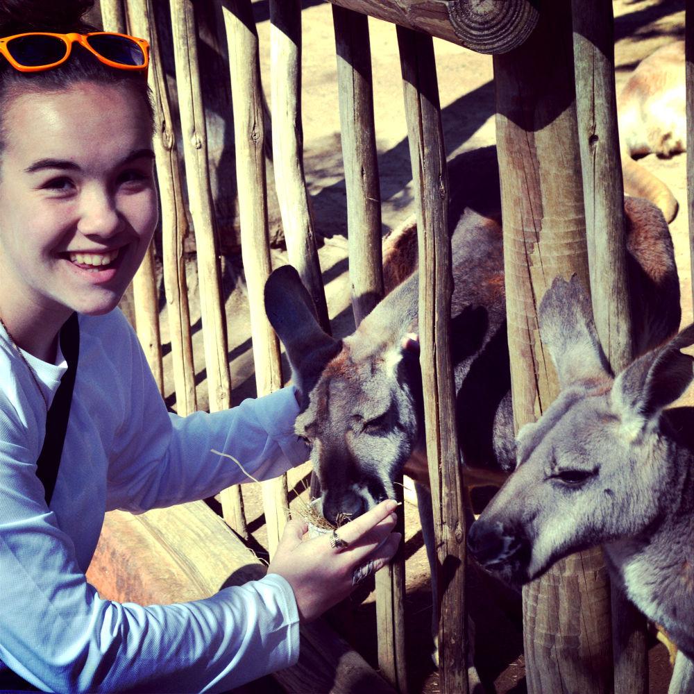 Feeding Kangeroos.jpg by HannnaahhEdiie