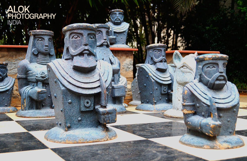 What's your move?  Be friends with us; like us today: www.fb.com/AlokPhotographyIndia by go4alok
