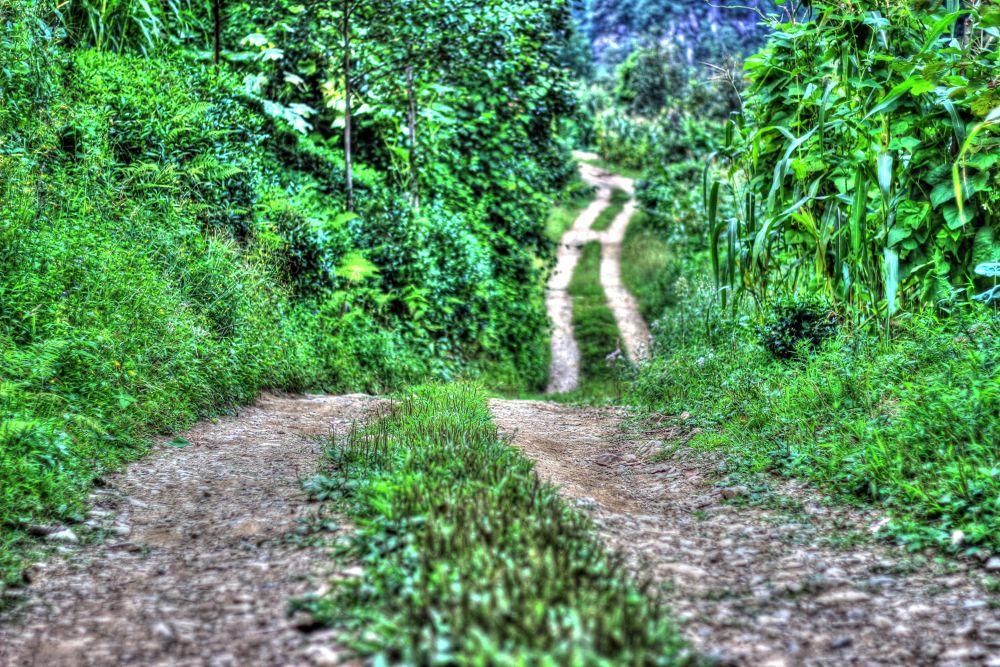 Road by iskenderdelibas