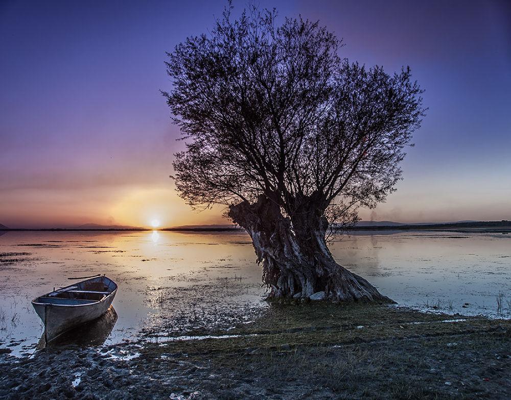 Sunset by tolgaozdemira