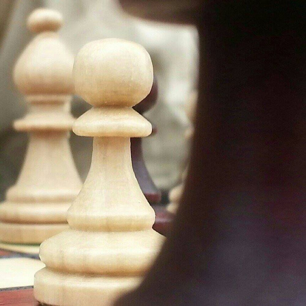 chess.jpg by wallycatgirl