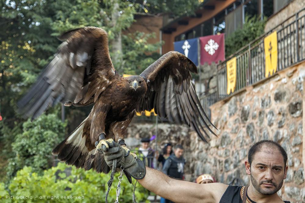 Águila by Piti García