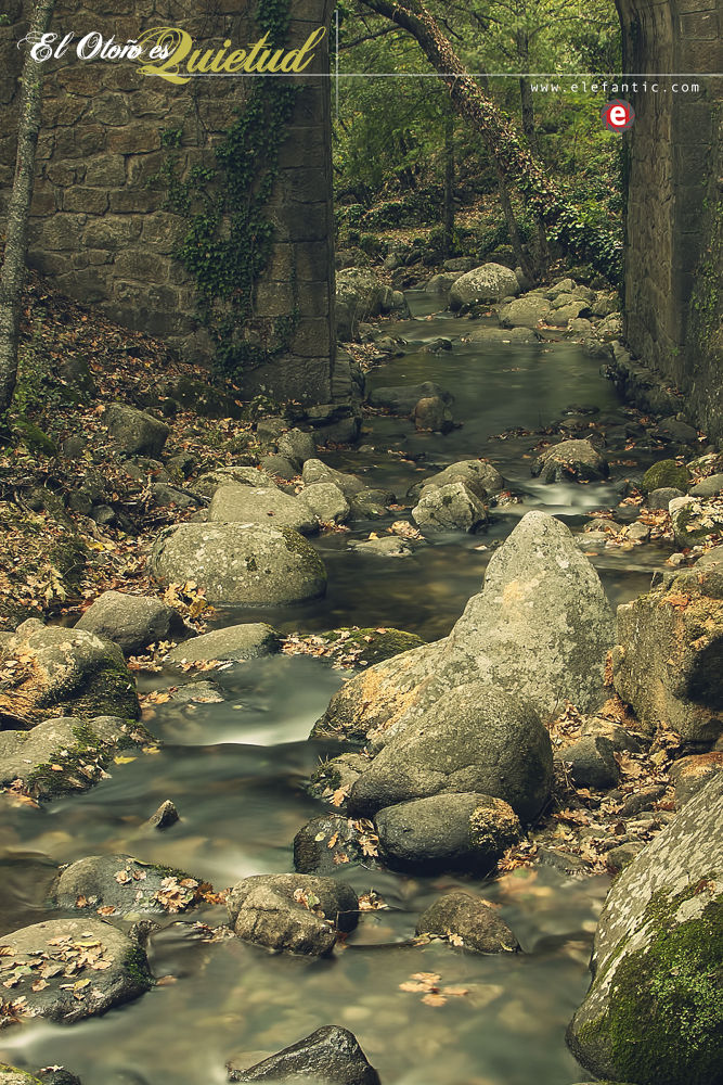 El otoño es quietud by Piti García