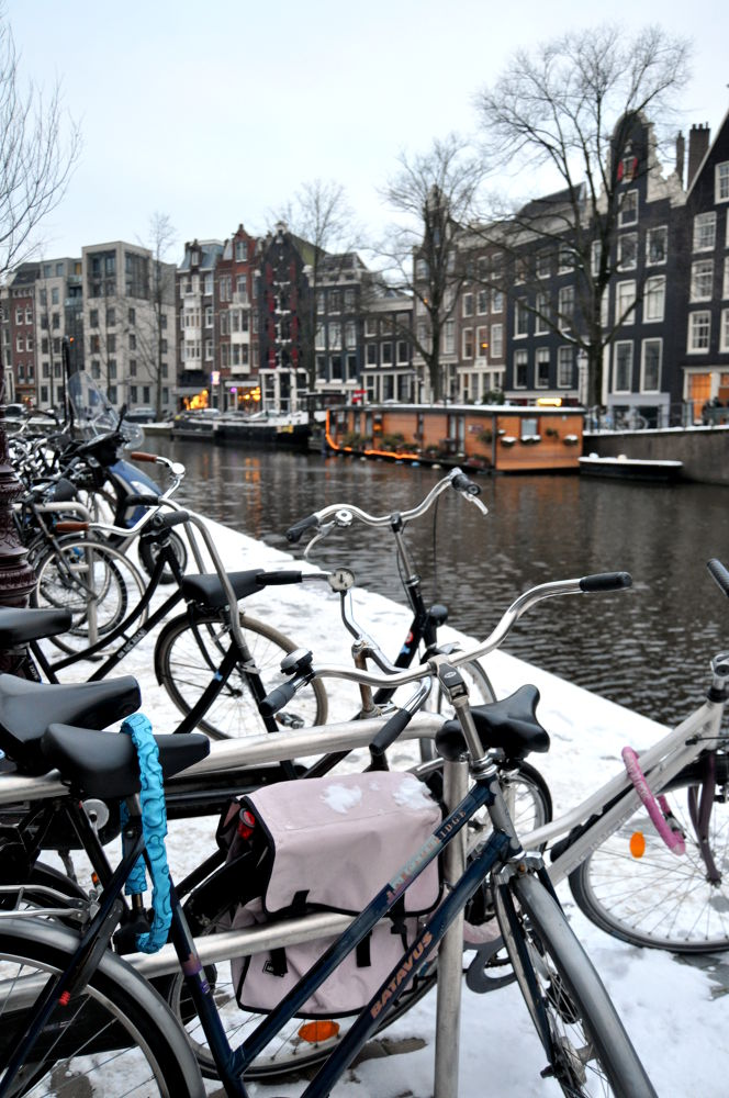 Amsterdam  by susanatorres1800721