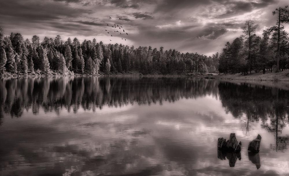 serenity by dnphotographyspasovici