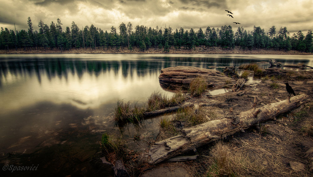 Woods Canyon Lake by dnphotographyspasovici