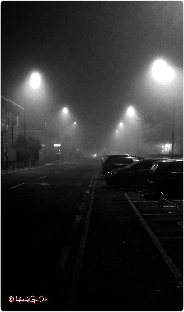 fog  0290 by giorgiopassoni1