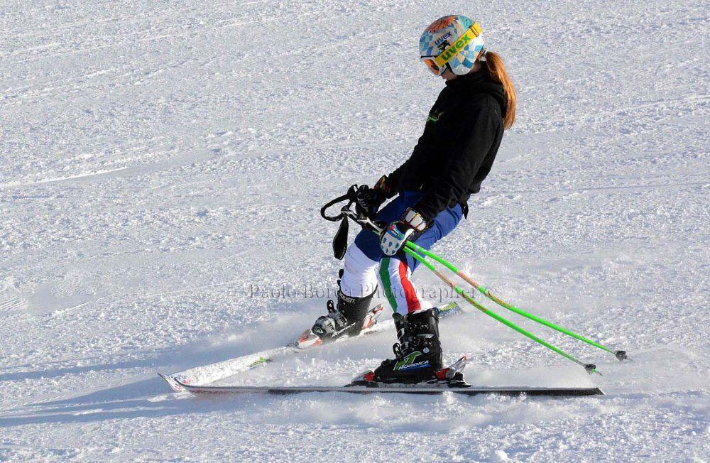 Scii by paoloborea