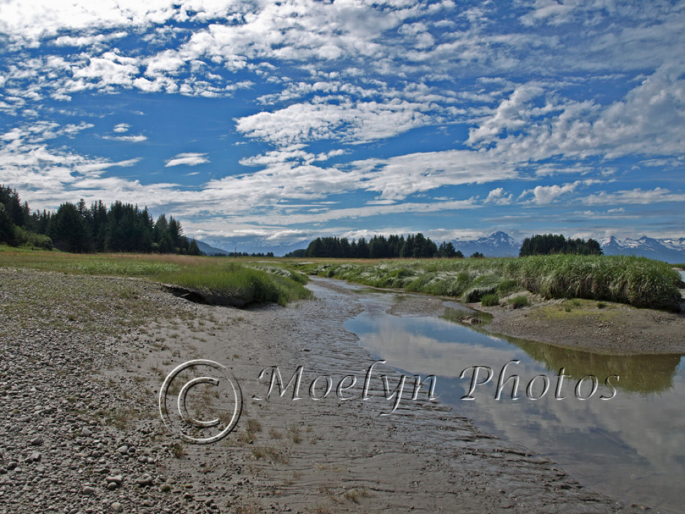 Juneau Boy Scout trail.jpg by Moelynphotos