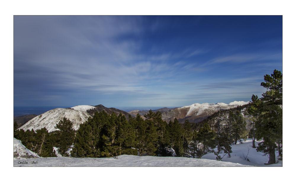 Photo in Landscape #mountain #moutains #montagne #ciel #sky #montagnes #sapin #neige #snow #pyrènées #cécile gans #cecile gans #gans