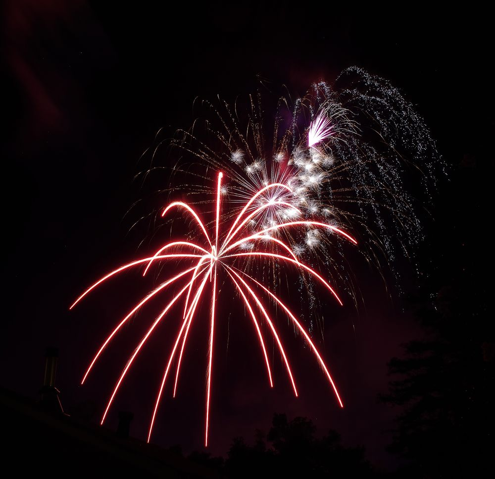 4th of July in Cloverdale, Ca. PNTX2443 by David Amaral