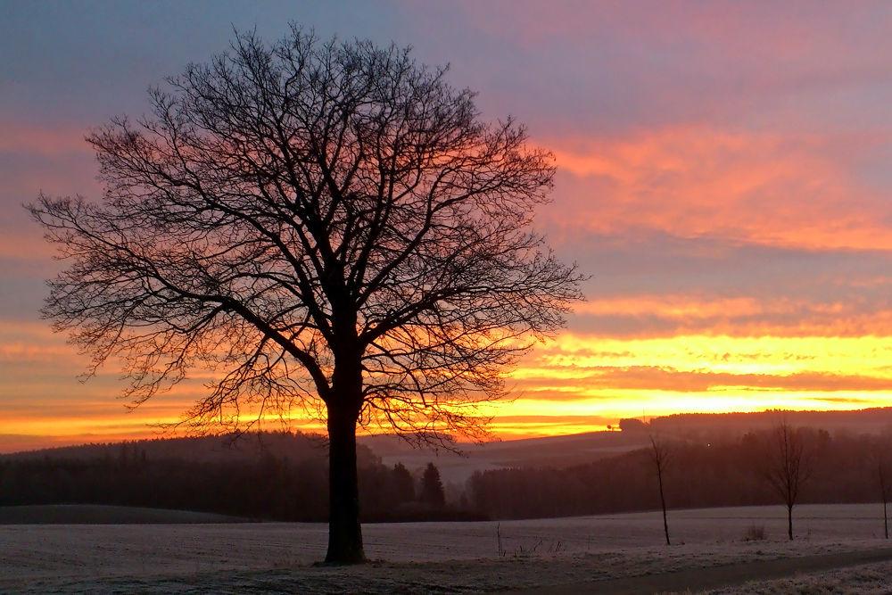 Winter Sunrise by Juergen Mayer