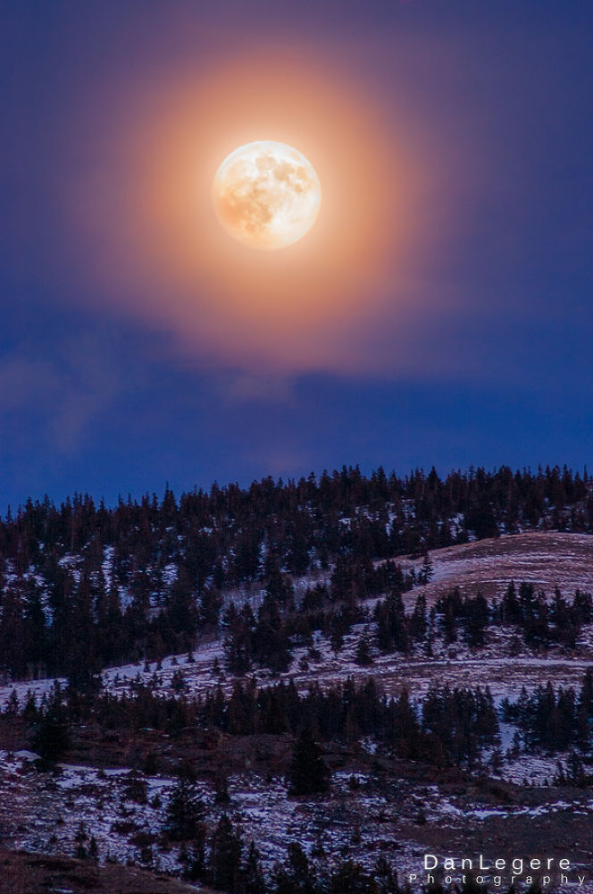 Moonlight Glow https://www.facebook.com/danlegerephotography by DanLegere