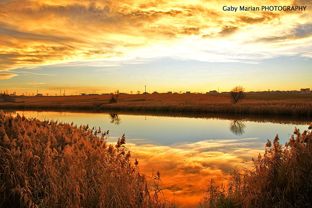Golden lake by Gabi MARIAN