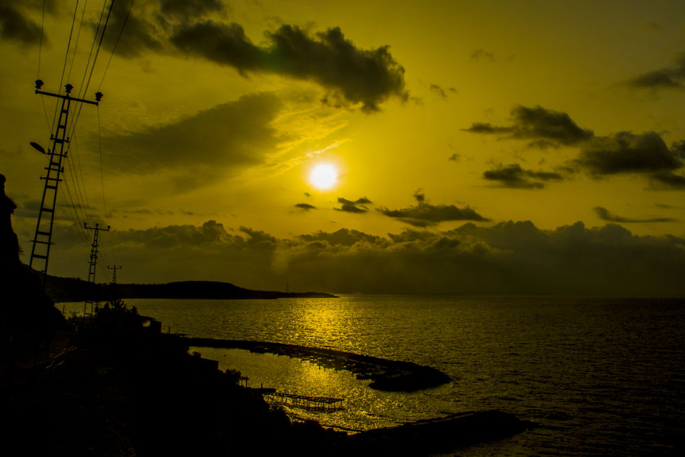 IMG_0061 by metinaksoy58